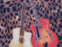 Two Guitars